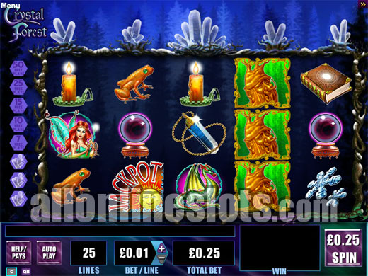 Best USA Gambling Online Casinos  USA No Deposit Casinos