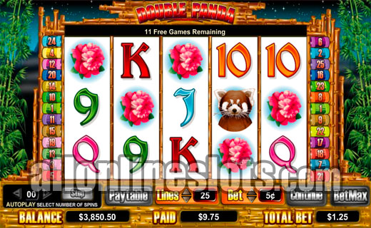 Double Panda™ Slot Machine Game to Play Free in Cryptologics Online Casinos