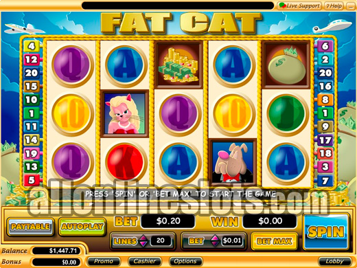 Fat Cat™ Slot Machine Game to Play Free in Cryptologics Online Casinos
