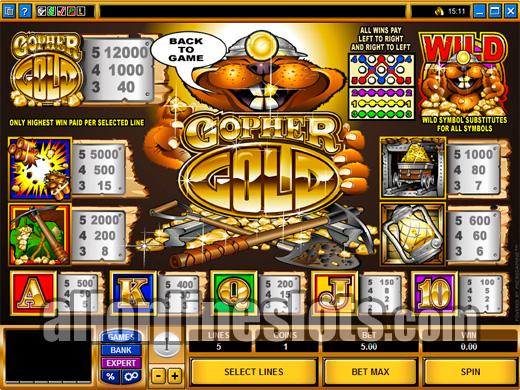 Biggest online slot win